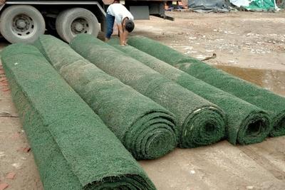 Mua bán cỏ nhân tạo đã qua sử dụng