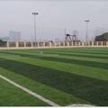 Sân bóng đá Đa Sỹ