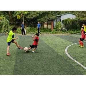 Sân bóng đá Yên Viên