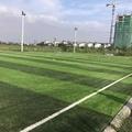 Sân bóng Lai Xá - Kim Chung