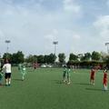 Sân bóng đá Z133