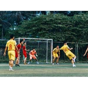 Sân bóng Việt Anh Tân Xá