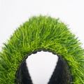Thảm cỏ nhân tạo 3cm L381388A30