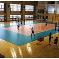 Thảm sân bóng chuyền Enlio A-52145