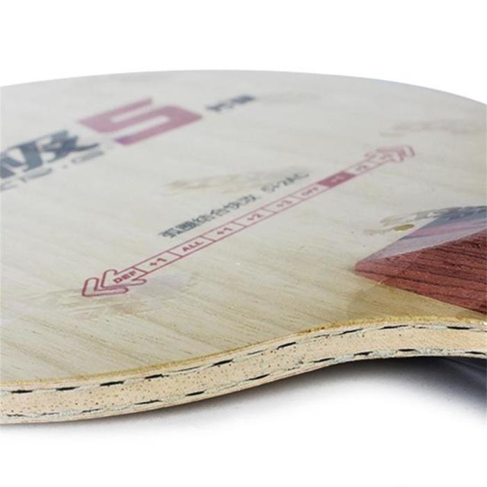 Cốt vợt DHS PG 5