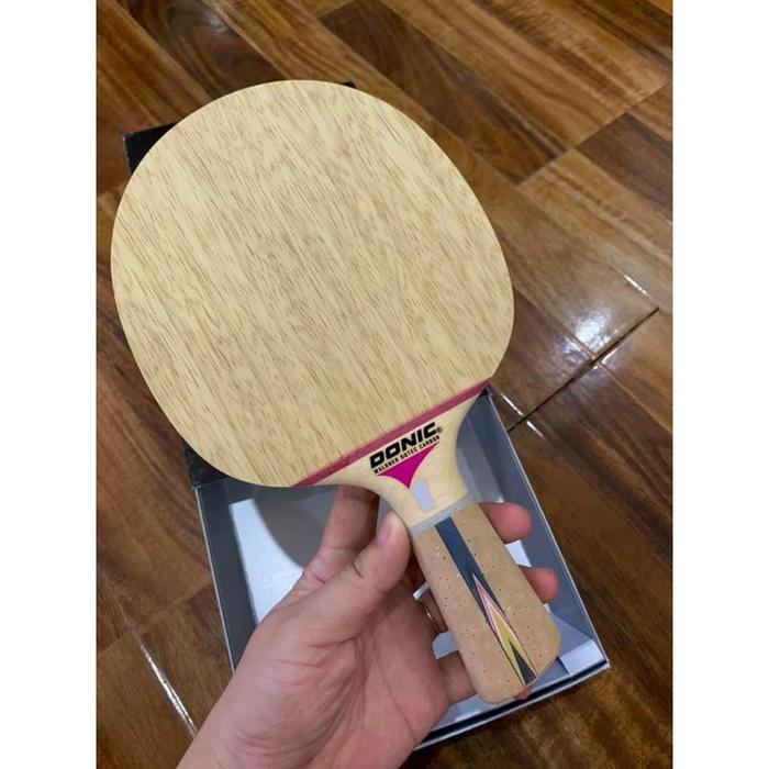 Cốt vợt Donic Dotec Carbon