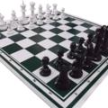 Bộ cờ vua nhựa