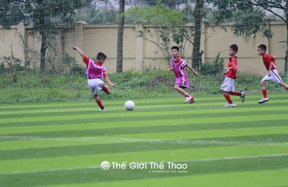 Sân bóng đá Trung tâm Thể dục thể thao Gia Lâm - Hà Nội