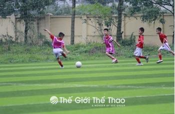 Sân bóng đá Trung tâm Thể dục thể thao Gia Lâm