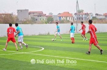 Sân bóng Phương Nam