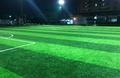 Sân bóng đá Osaka