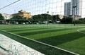 Sân bóng đá Gia Quất