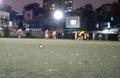 Sân bóng MU Liên Chiểu
