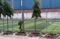 Sân bóng đá Mini Nguyễn Gia