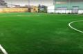 Sân bóng đá Bao Bì Xi Măng