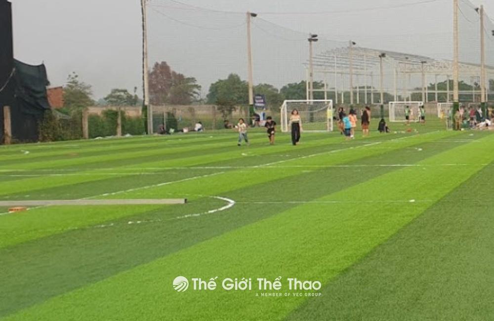 Sân bóng CLB Sân Bóng Đá 77 (152 Nguyễn Oanh)