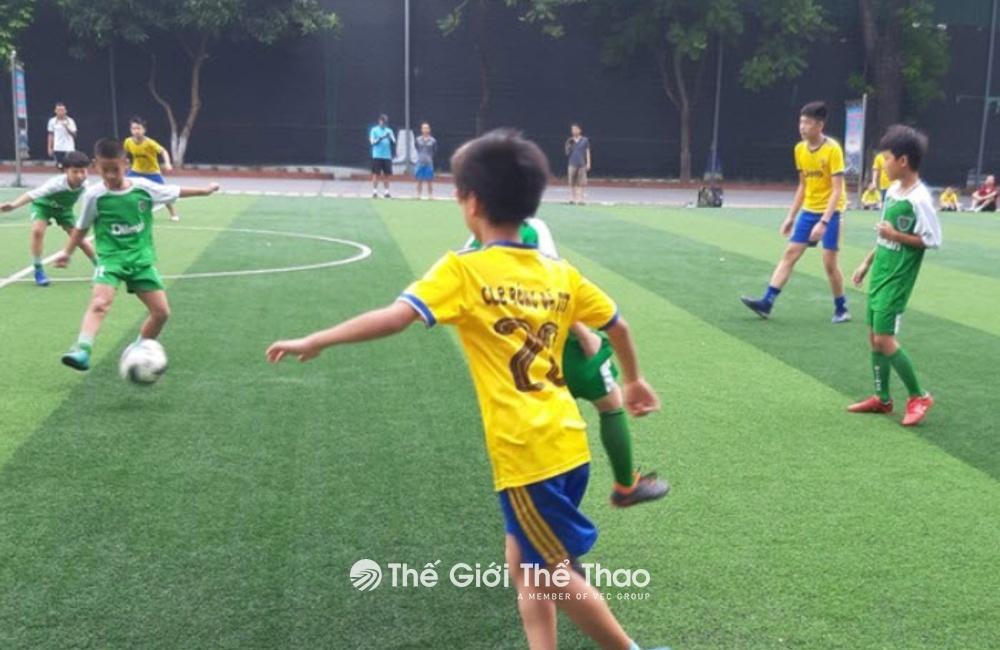 Sân Bóng đá Cây Sung 379