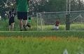 Sân Bóng đá Phú Xuân