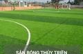 Sân bóng đá Thủy Triều