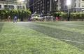 Sân bóng đá Cầu Nam Lý, Quận 9