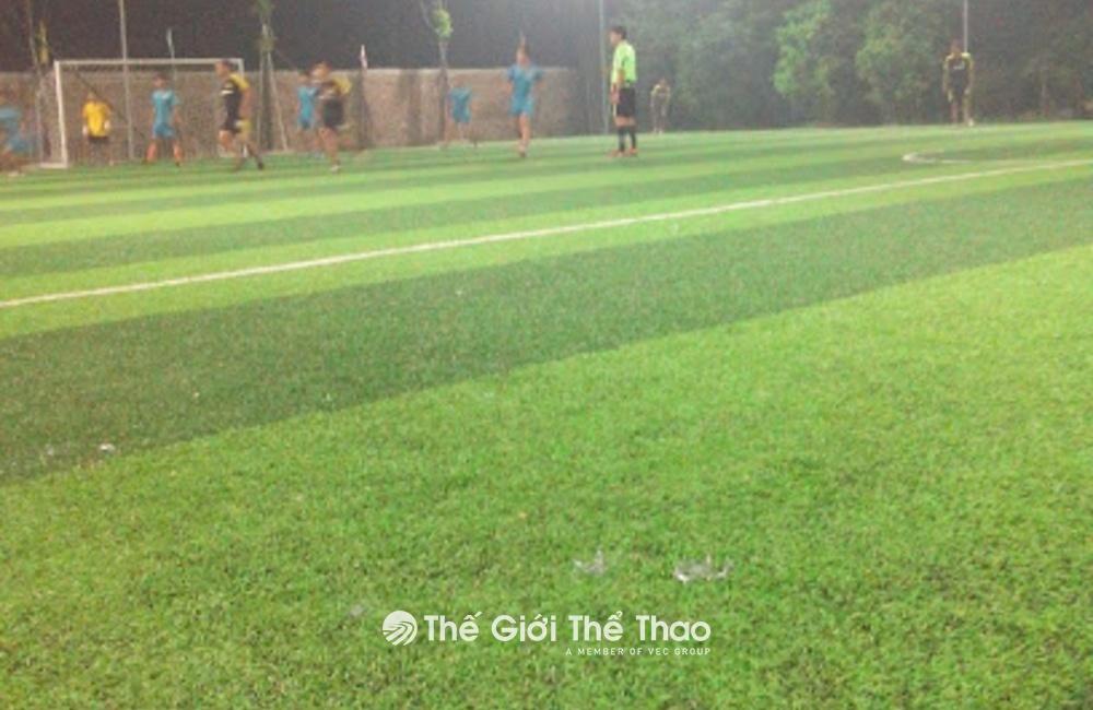 Sân bóng đá Mạnh Dũng - TP. Nam Định