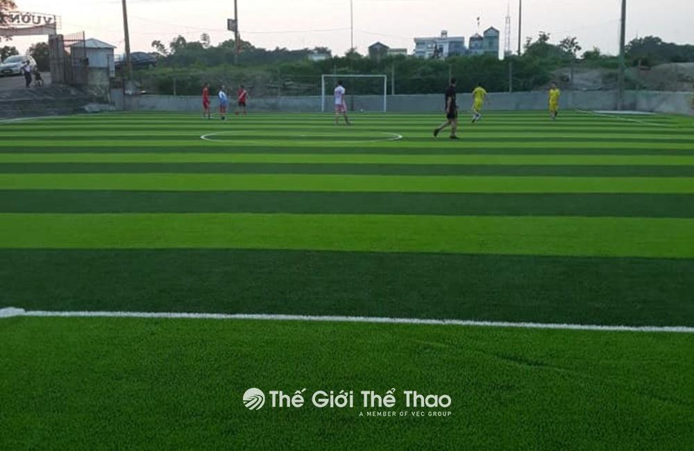 Sân bóng đá Vườn Xoài - TP Nam Định
