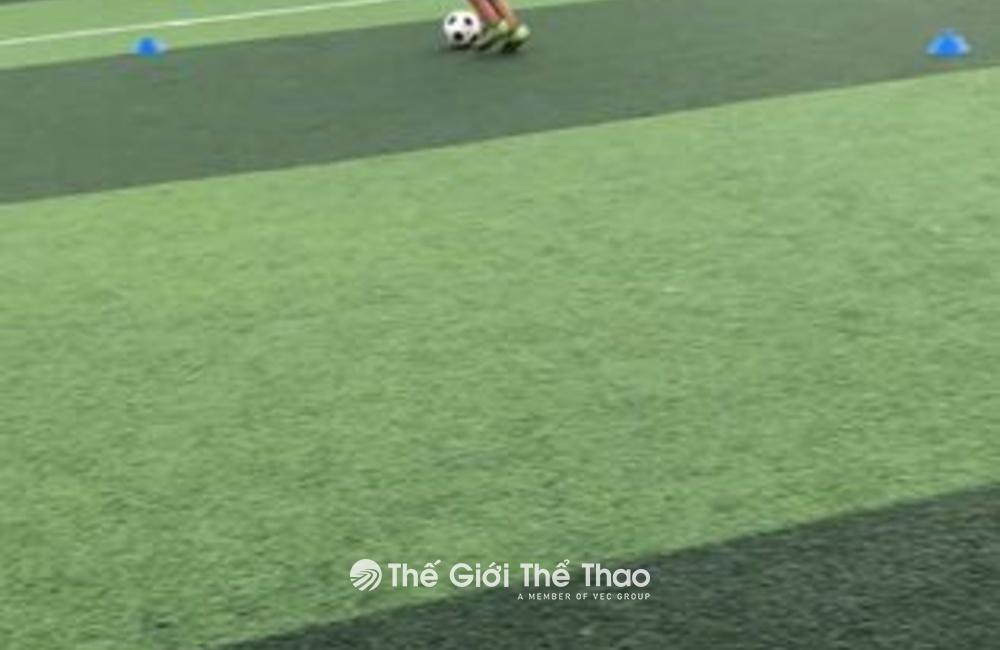 Sân bóng Bảo Minh - Xuân Trường Nam Định