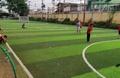 Sân bóng Giai Phạm - Yên Mỹ Hưng Yên