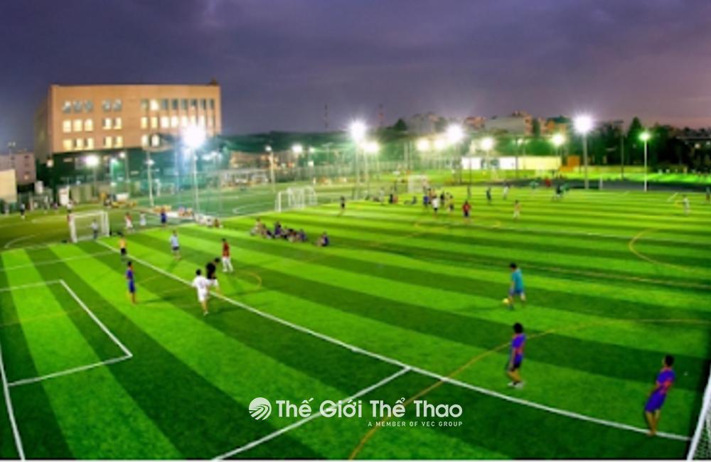 Sân Cỏ Nhân Tạo Làng Tự - Việt Yên Bắc Giang