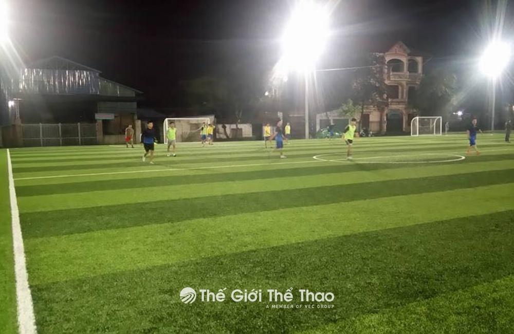 Sân cỏ nhân tạo Thái Hưng - Thái Nguyên