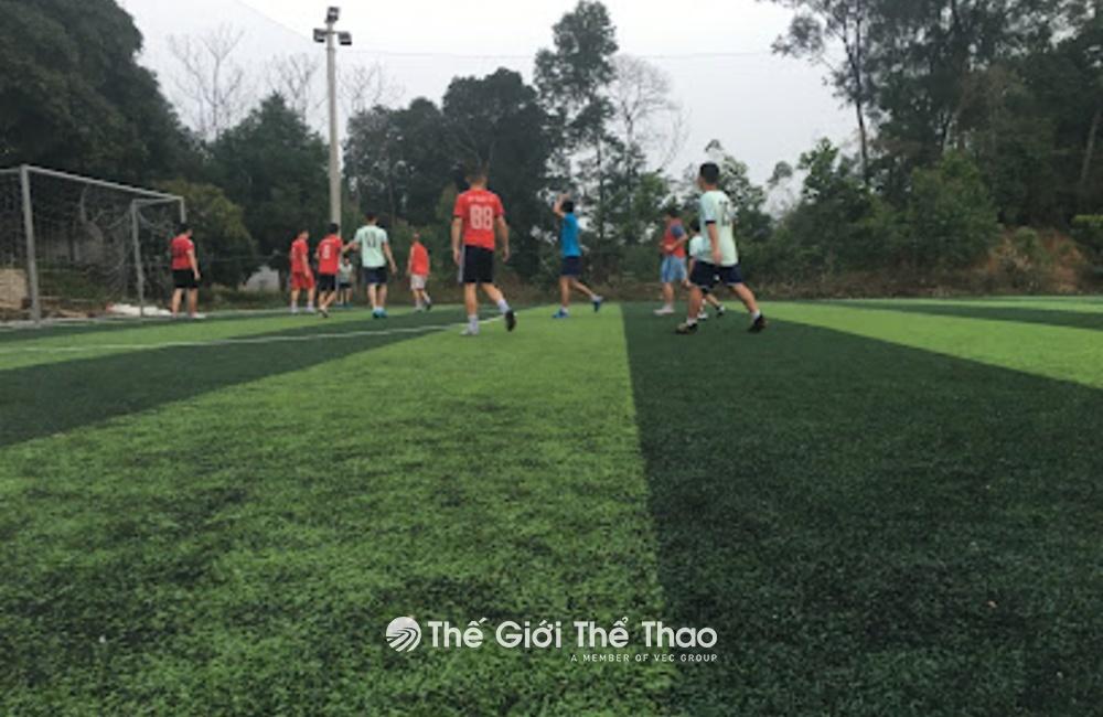 Sân cỏ nhân tạo Đền Hùng - Việt Trì Phú Thọ