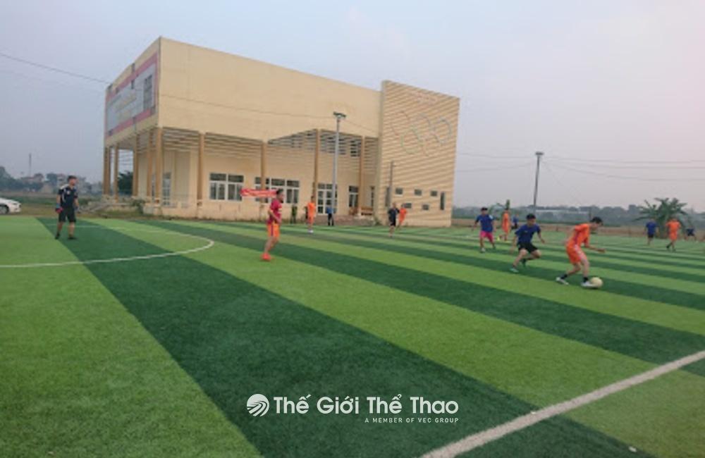 Sân cỏ nhân tạo Tân Phong - Bình Xuyên Vĩnh Phúc