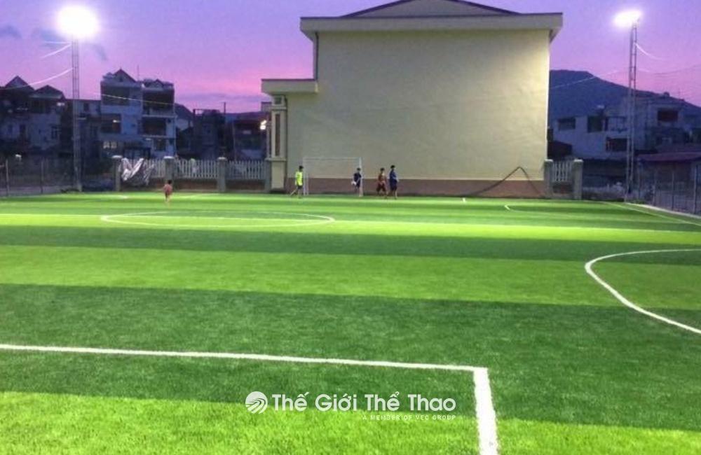 Sân bóng cỏ nhân tạo Khu Bốn - Sơn Động - Bắc Giang