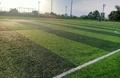 Sân bóng đá Sông Lô - Việt Trì - Phú Thọ